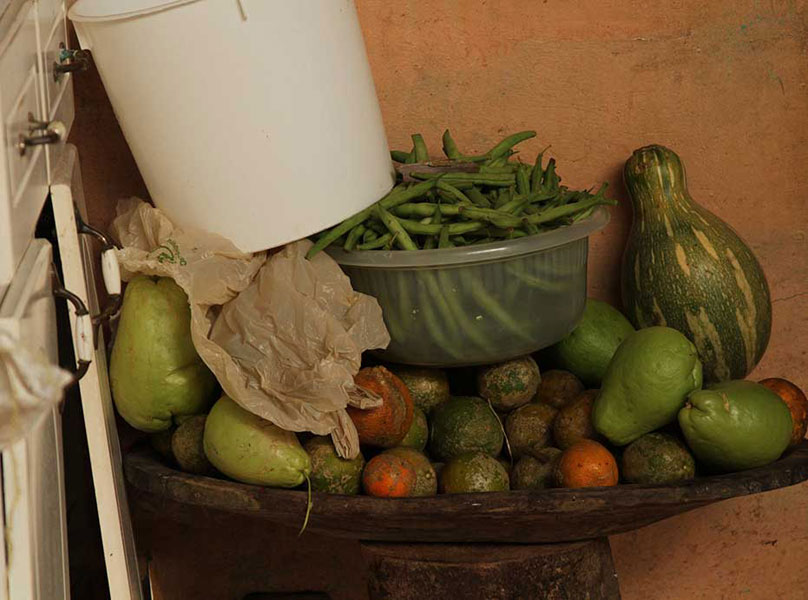 Fresh fruits and vegetables sit in a bowl in the outdoor kitchen in a traditional rancho constructed behind a Boruca family home. The tropical climate allows for a variety of produce to be grown within the village.