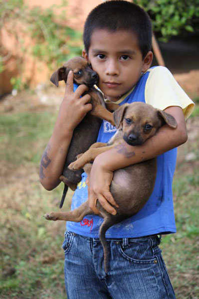 A young boy holds two puppies outside his home in Boruca. Dogs are an important part of Boruca life and are found throughout the village.