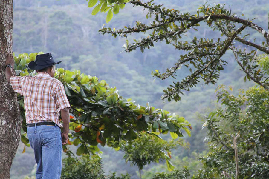 A man stands admiring the view from the top of a hill near the church in Boruca. The Boruca reserve is extensive, and all the land in this view is used by Boruca people.